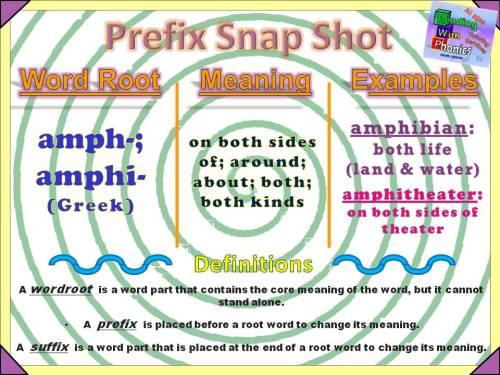 amph-amphi-prefix-snap-shot